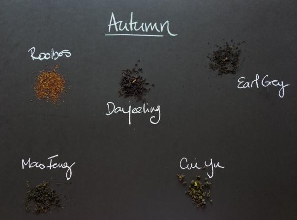 Autumn essentials by Teascopia